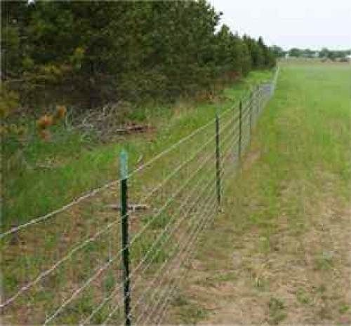 Barb Wire Fence Google Search Ranch Life Fence Doors
