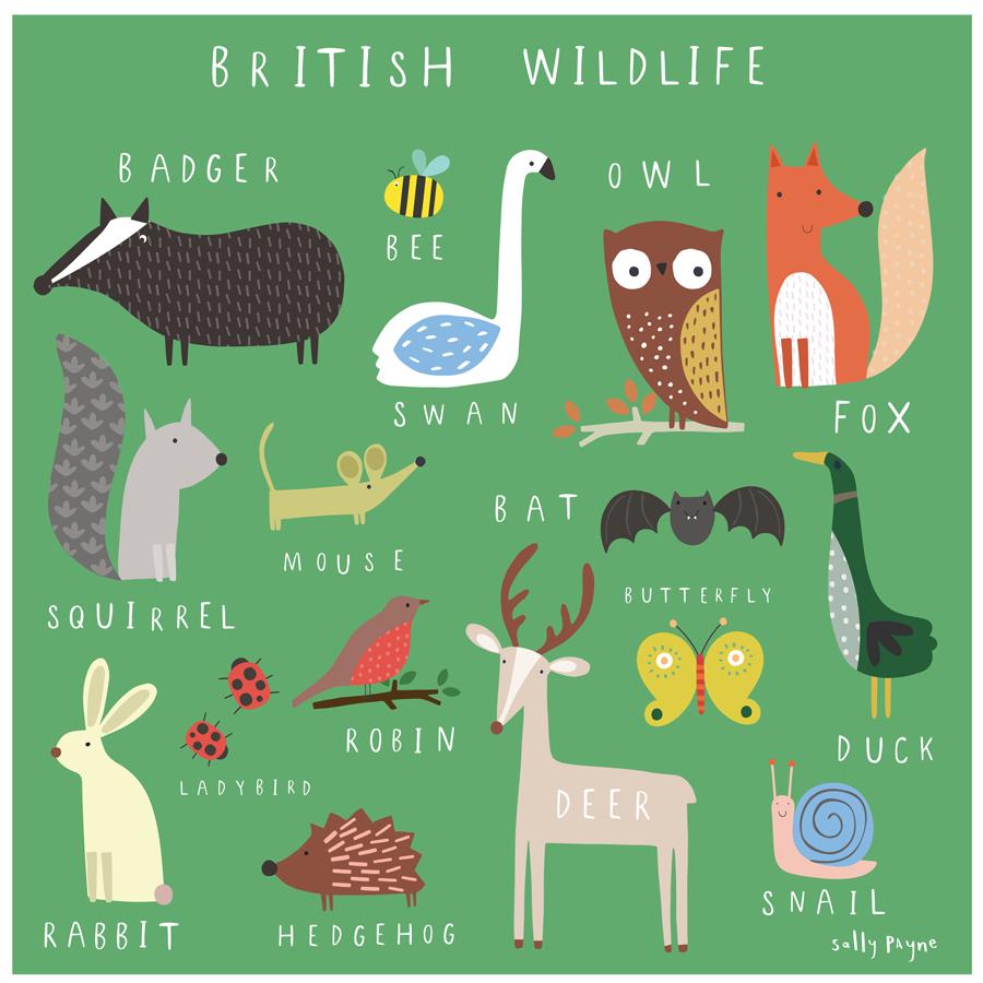 British wildlife ... - Sally Payne   Art wall kids, British wildlife,  Childrens wall art
