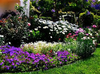 Photo of Five Simple Steps to Designing Beautiful Flower Beds
