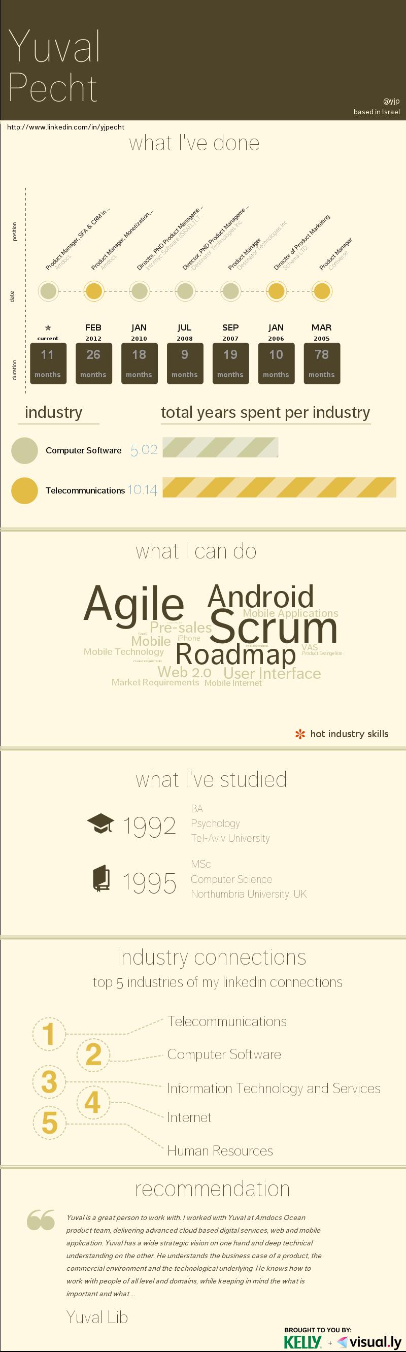 Visual Cv  Earthtone  Me    Create Infographics