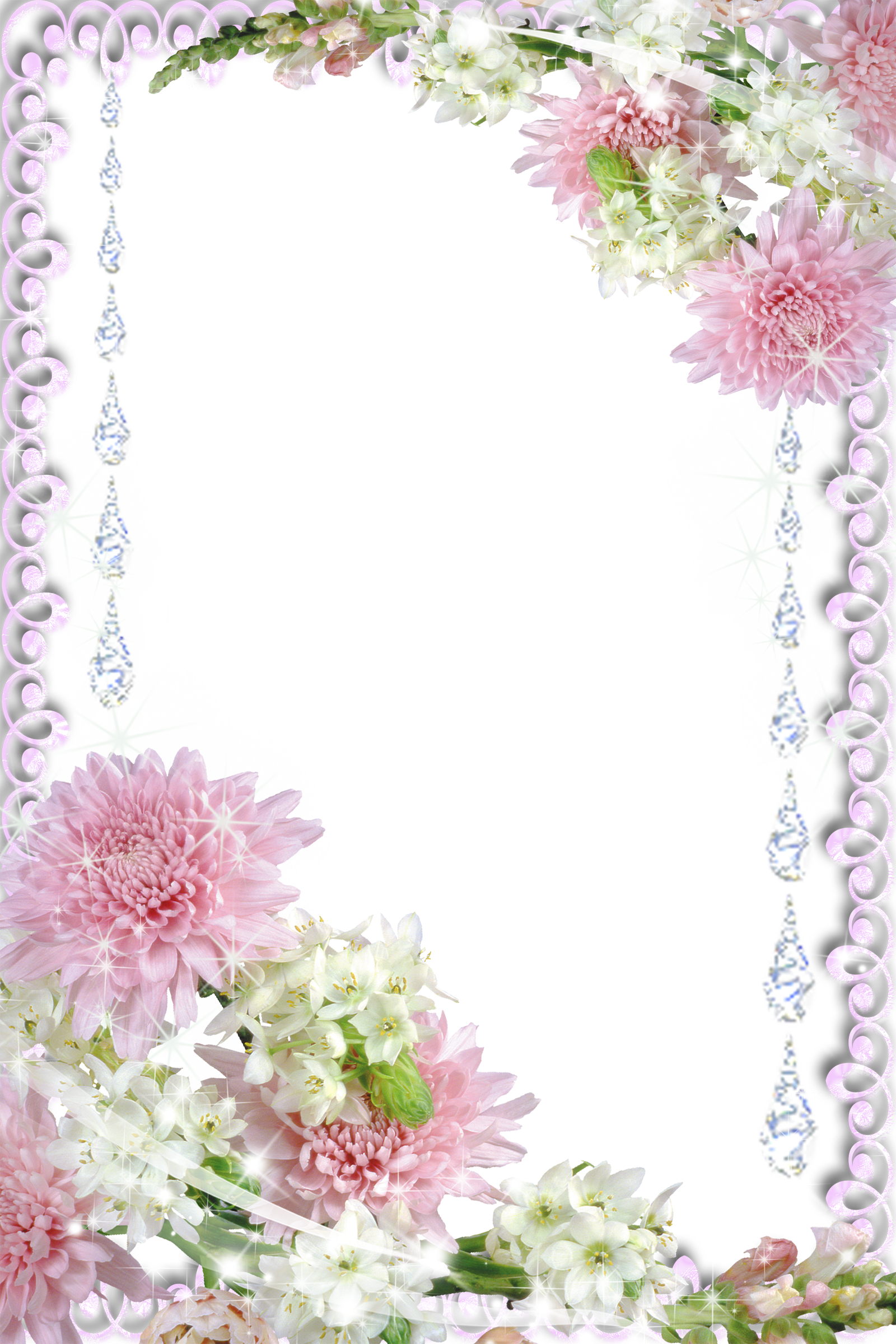 Real Flowers Transparent PNG Photo Frame | Borders ...