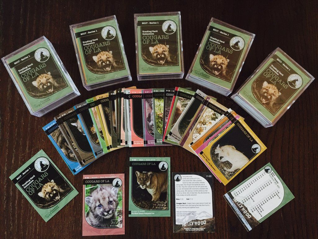 National Wildlife Federation\'s Cougar Trading Card Collection Makes ...