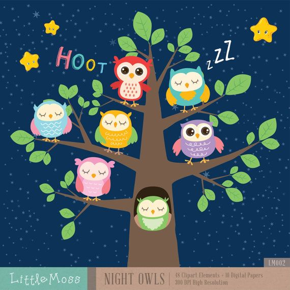 Night Owls Digital Clipart And Papers Coruja Desenho Papelaria