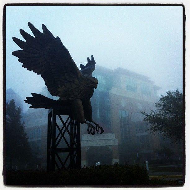 University of Louisiana at Monroe in Monroe, LA