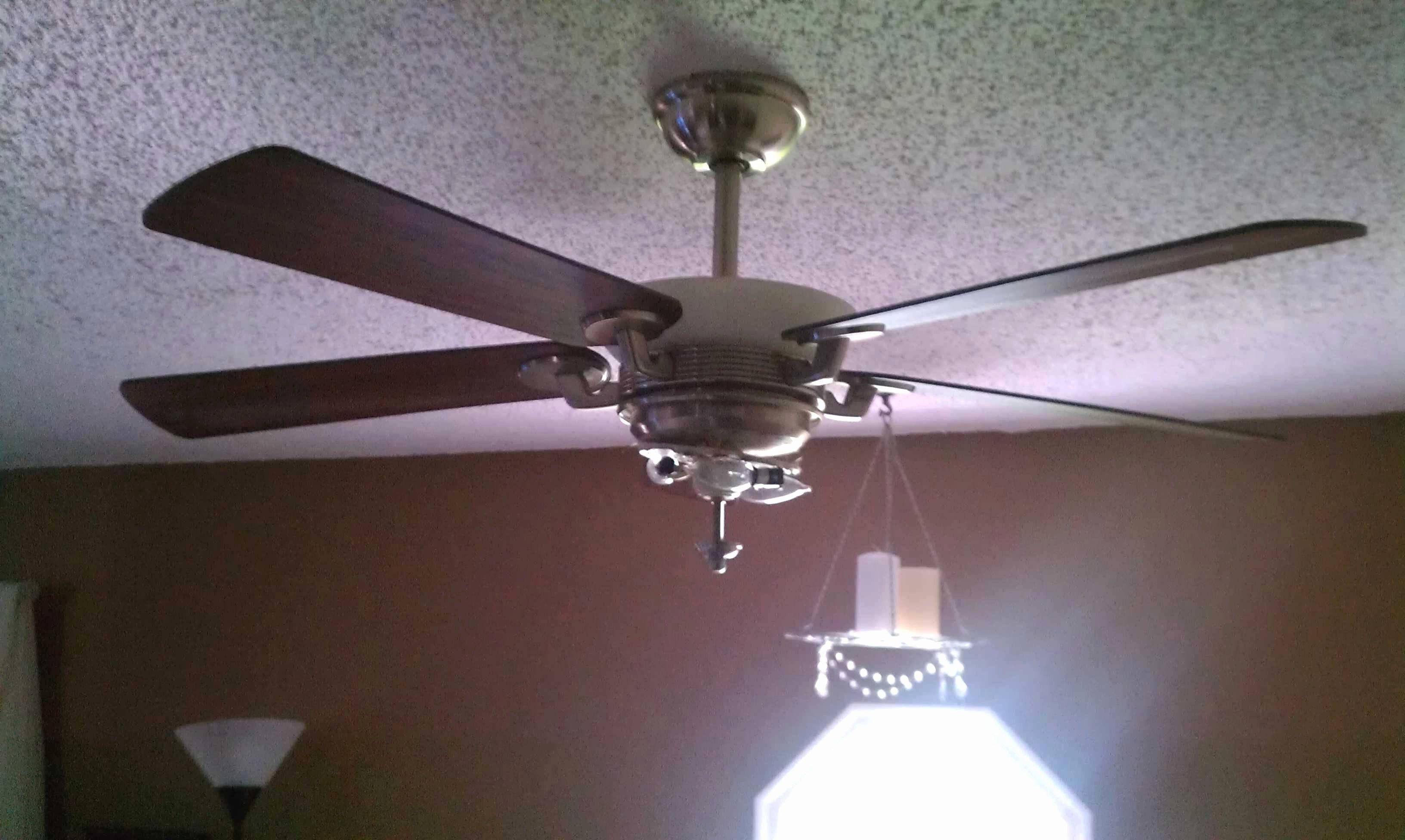 Modern Ceiling Fans With Lights Foothillfolk Designs