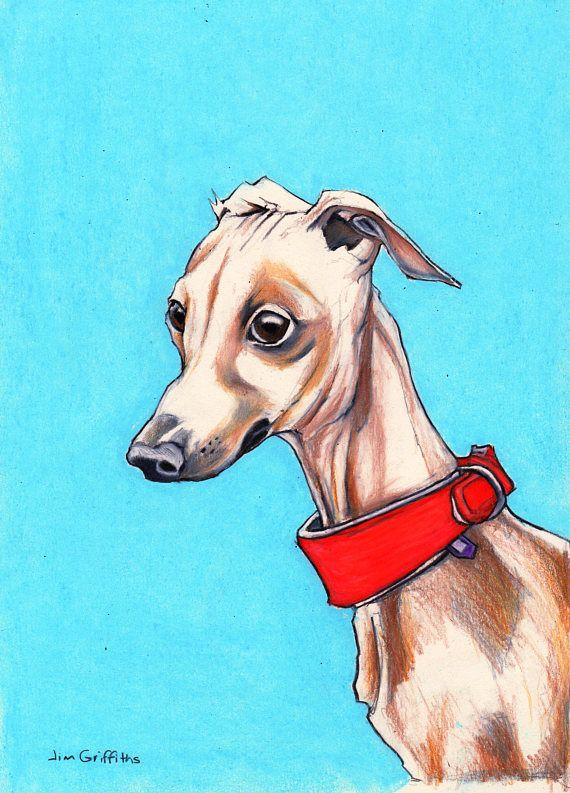 Italian Greyhound Art Sighthound Art Original Colour Pencil Petit Levrier Italien Levrier