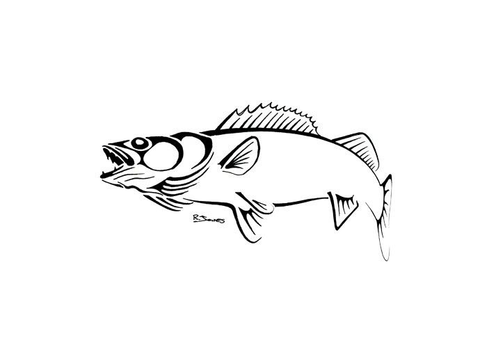 Walleye Tattoo Outline Tribal Animal Tattoos Salmon Tattoo