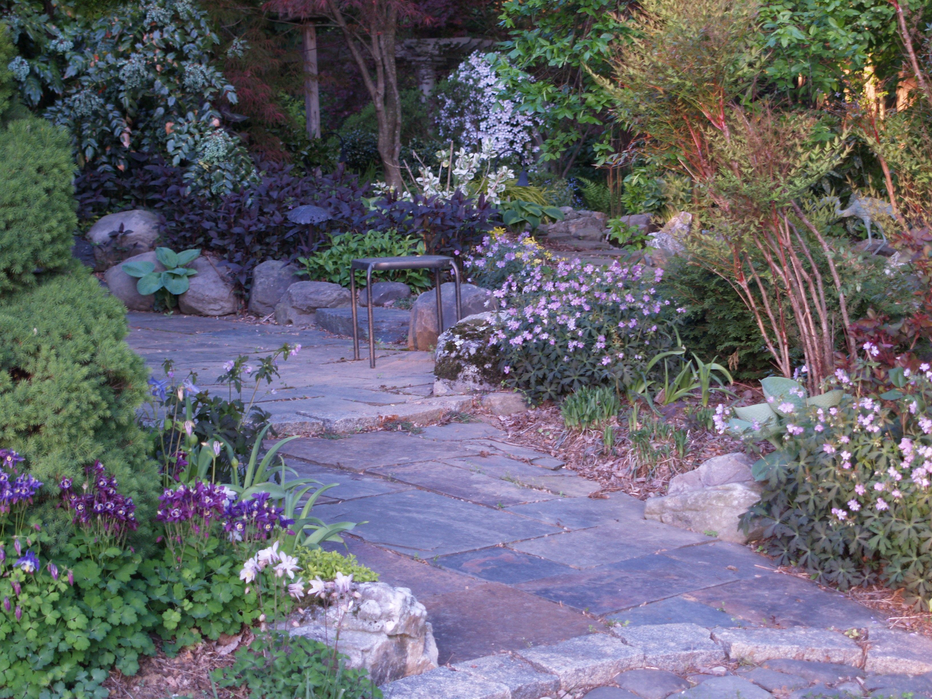 A Low Maintenance Garden