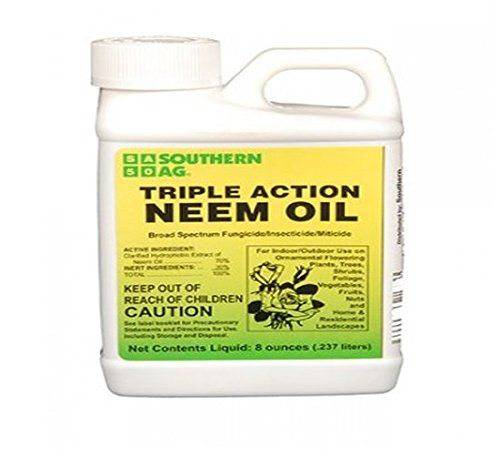 Neem Oil For Plants: Natural Pest Control No Pesticides