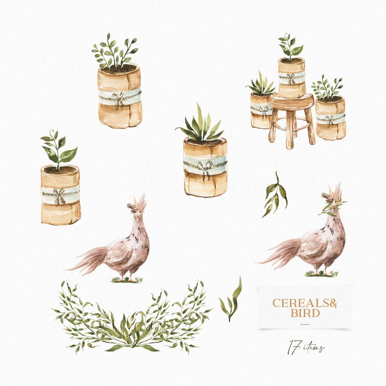 Cereals and Bird, Graceful Wreaths, Potted Sprouts