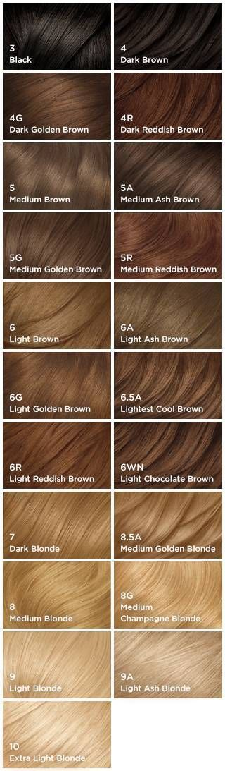 Clairol S Hair Color Chart