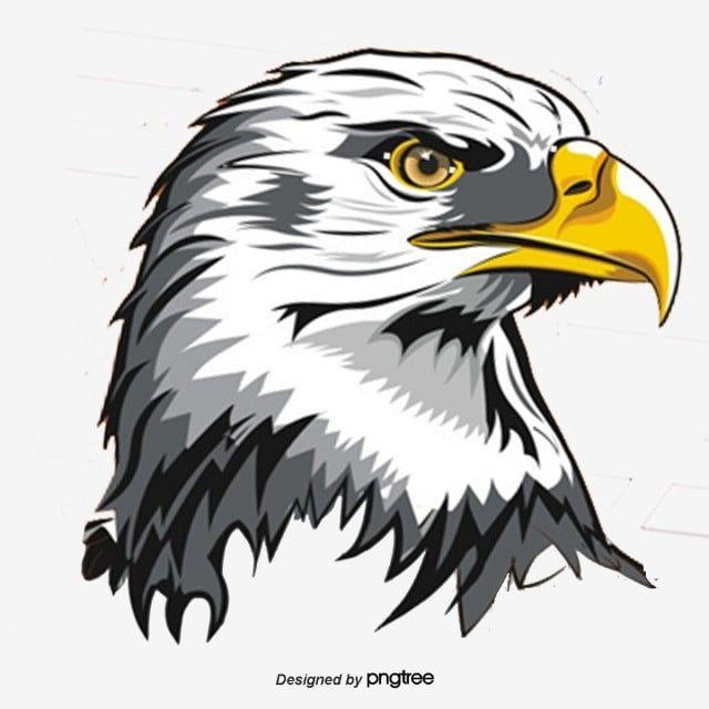 نسر ناقلات النسر الحيوان الاداءات Png وملف Psd للتحميل مجانا Eagle Vector Eagle Images Eagle Silhouette