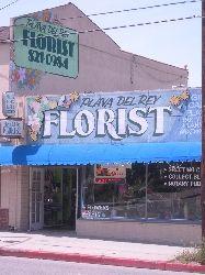 Playa Del Rey Florist Playa Del Rey Ca 90293 Playa Del Rey Florist Flower Delivery