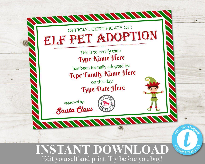 INSTANT DOWNLOAD Editable Boy Elf Pet Adoption Certificate
