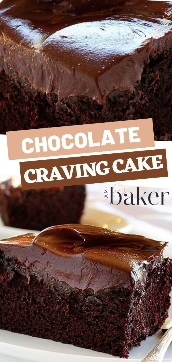 Chocolate Craving Cake- the most addictive cake ever!