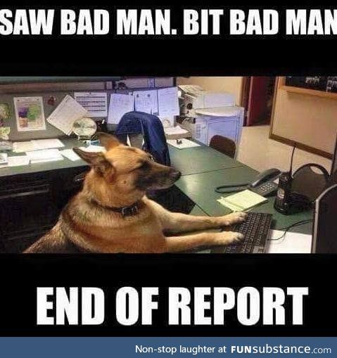 Whos A Good Boy Funny Animals Funny Animal Pictures Police Humor