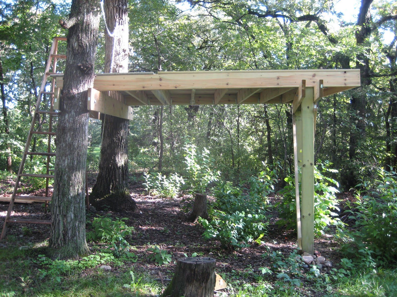 blinds hog pin platform build a to how deer tower blind hunting stand tree turkey on elevated