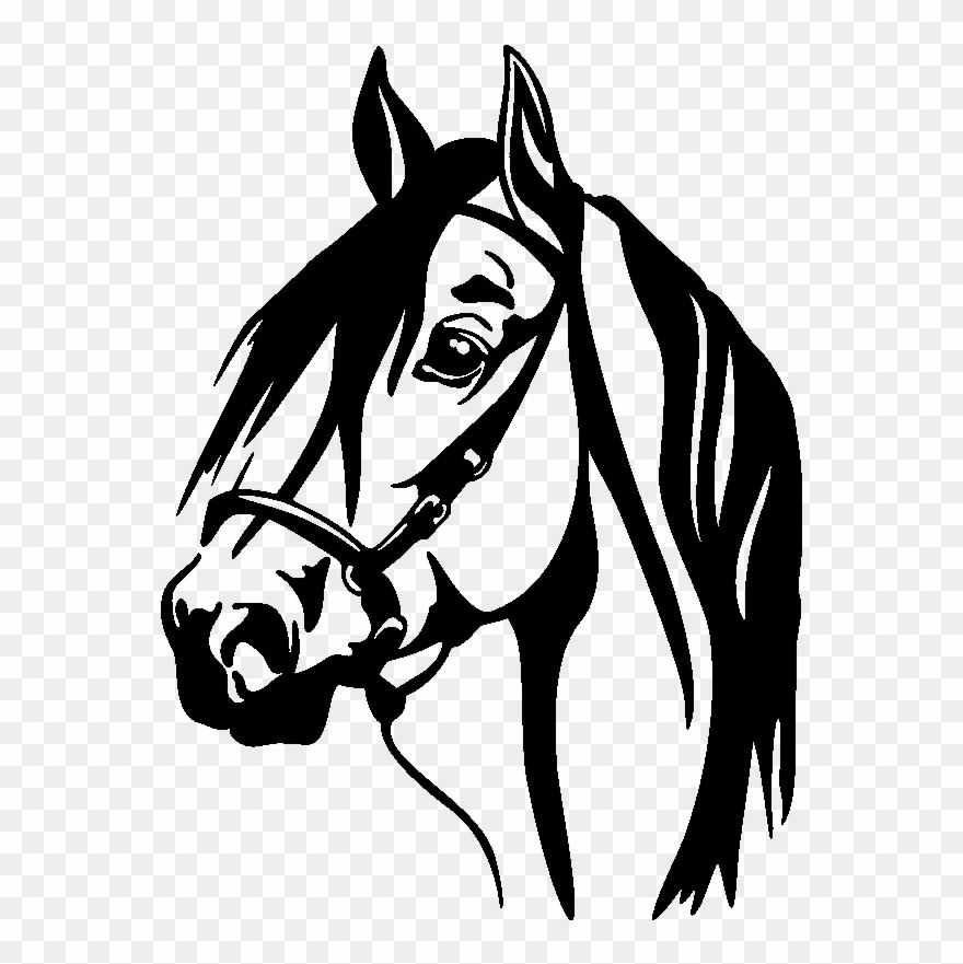Download Hd Horse Head Silhouette Png For Kids Horse Decal Clipart And Use The Free Clipart For Your Creative Project In 2021 Horse Head Animal Tattoo Horses