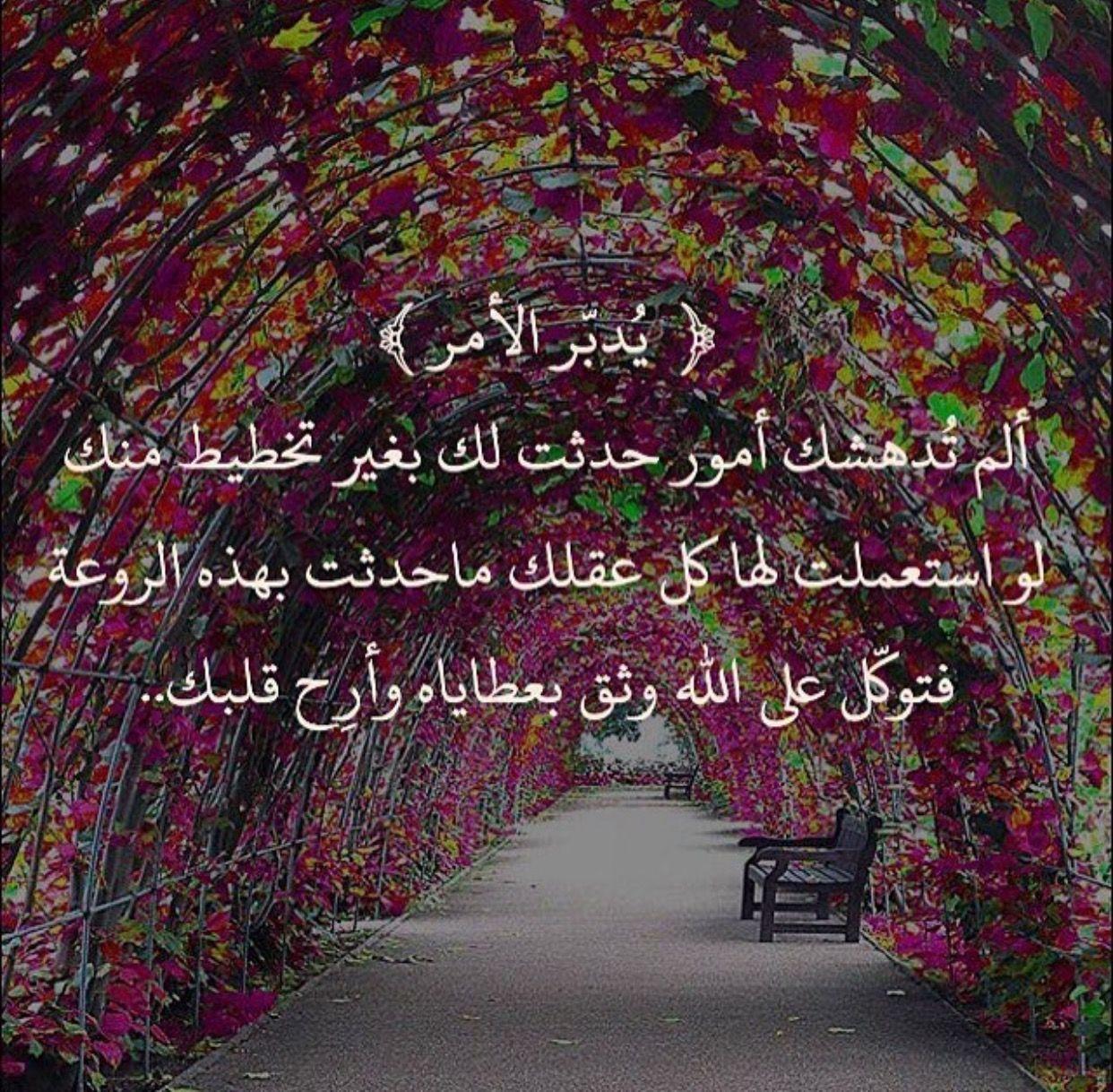 ارح قلبك فرب العباد بجانبك يسمع ويجيب Cool Words Holy Quran Islam
