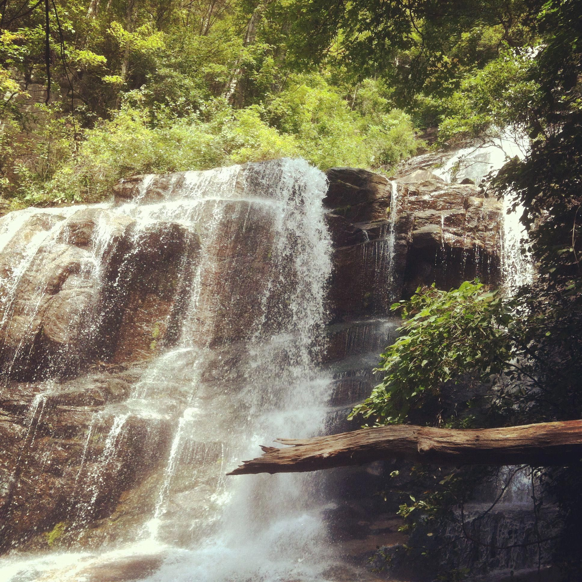 """Depicted In The Photo Is Falls Creek Falls, Near Jones"