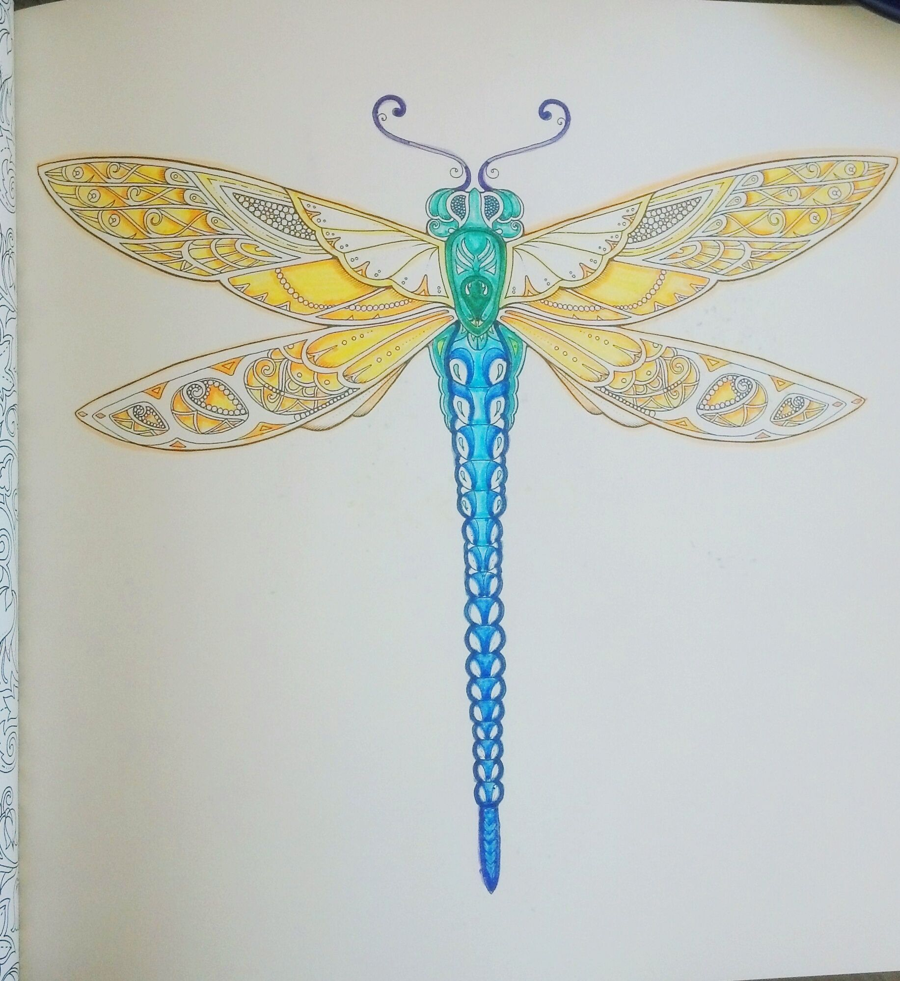 Adult Coloring Books This Is From Johanna Basfords Enchanted Forest I Just Use Basic