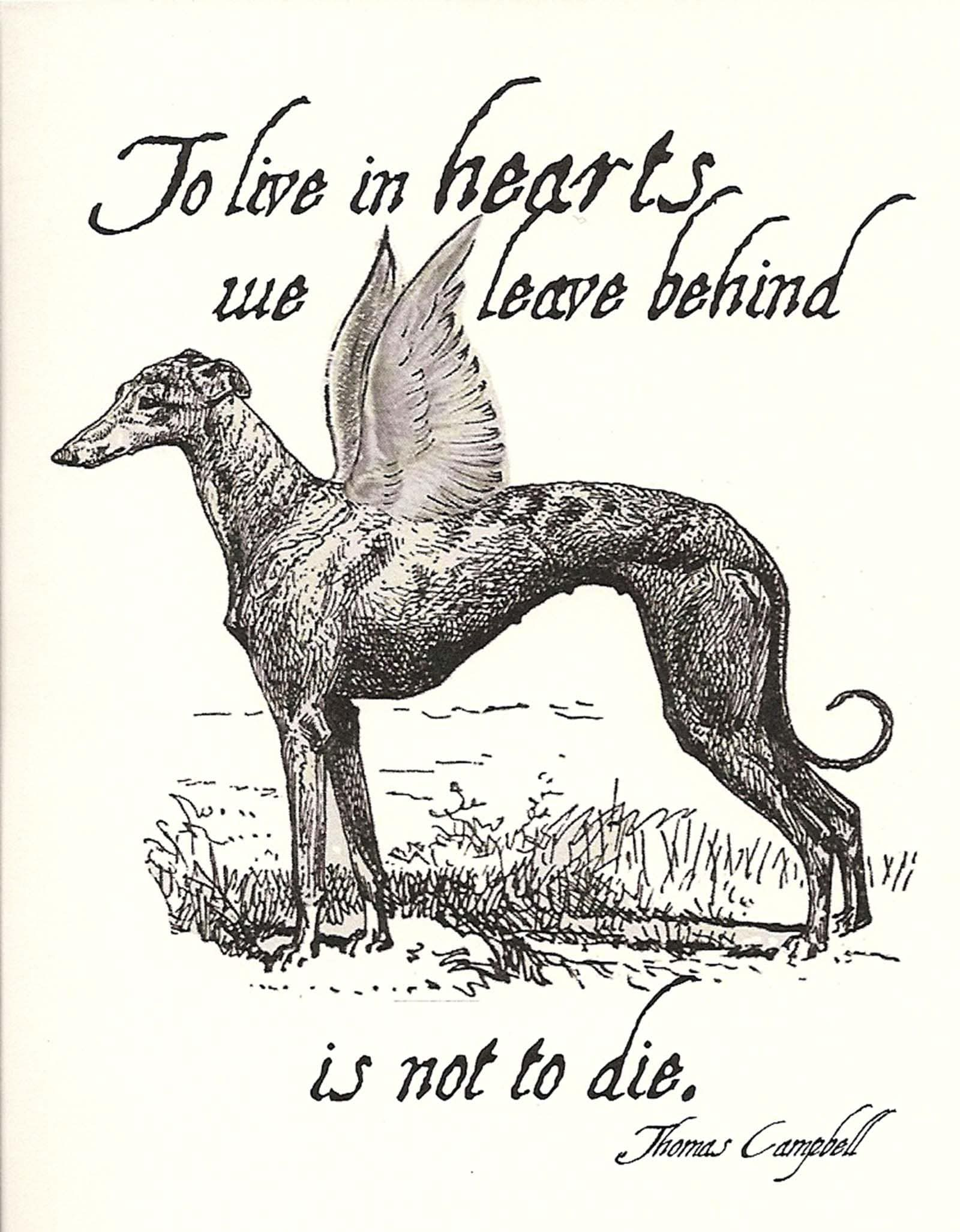 """GREYHOUND SYMPATHY CARD ASSORTMENT - one of each design, printed inside, with coordinating envelopes. Professionally printed, 5-1/2"""" x 4-1/4"""", set of 4. Trying to recover after the death of a pet is nearly impossible. These caring and heartfelt cards will express your feelings and extend comfort to those who are grieving. Also available in a set of eight cards. Part of all proceeds benefit Greyhound adoption. **()()()**$$$!!!&*"""