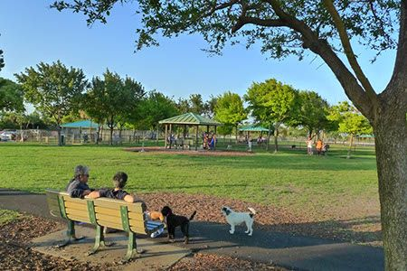 I Love Lake Ida Dog Park As A Resident Of Delray Beach And Proud Owner Am Grateful To Have One The Top Parks In Palm County