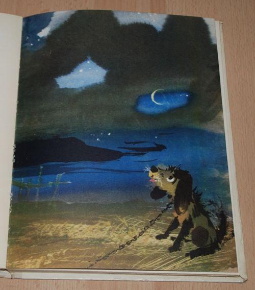 Idzie Niebo Ciemną Nocą In 2019 Childrens Book
