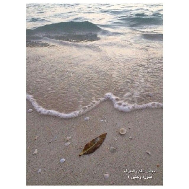 مسابقة صوره وتعليق 4 Outdoor Beach Water