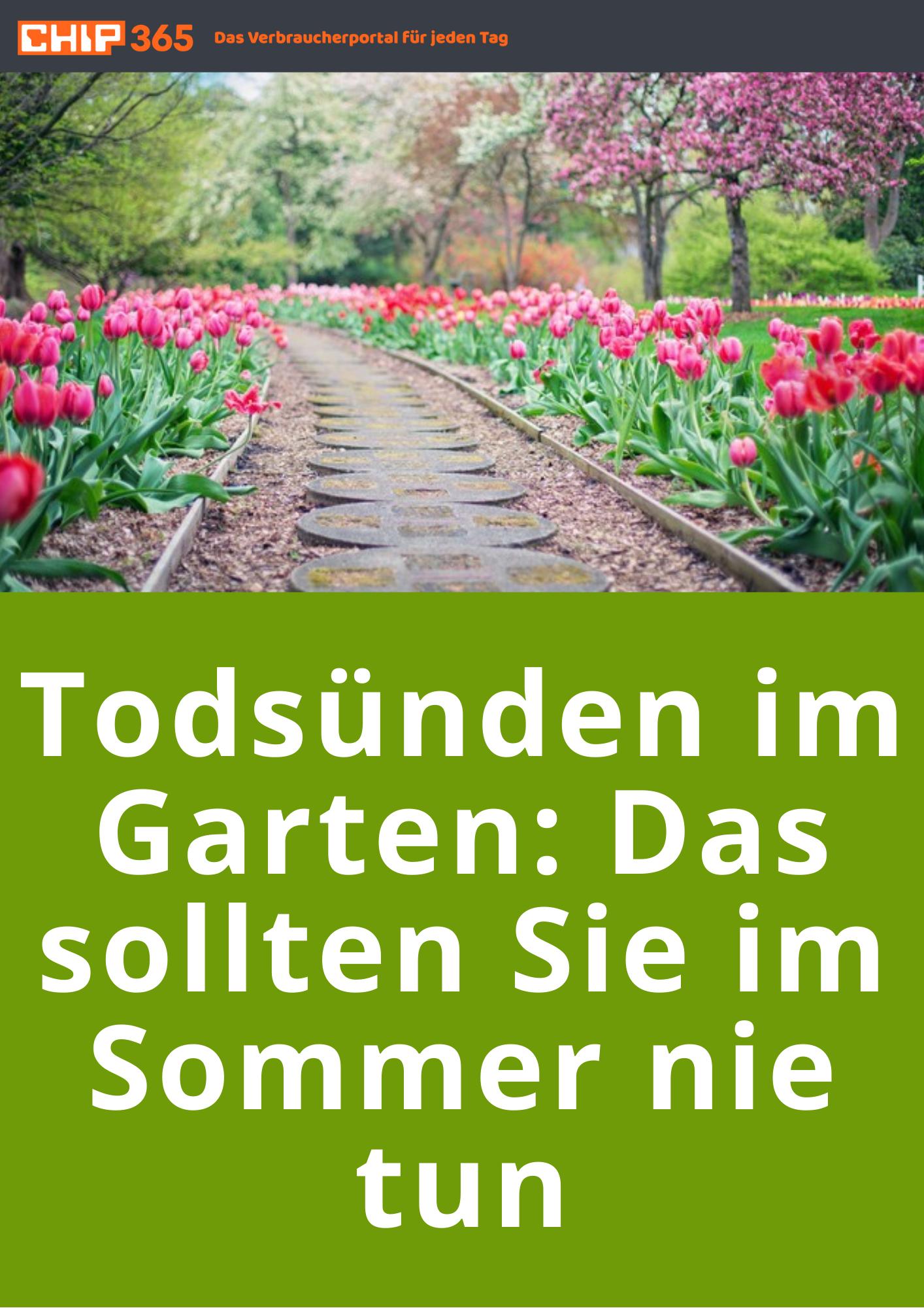 Todsünden im Garten: Das sollten Sie im Sommer nie