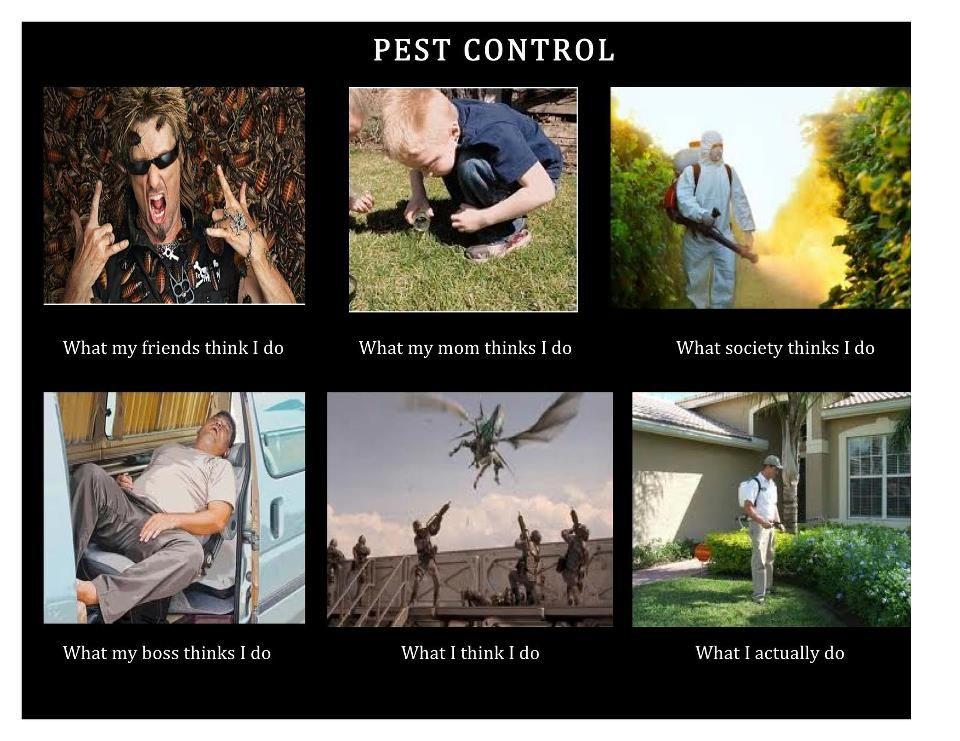 heh heh! Like I said... It's what I do! Pest control, My