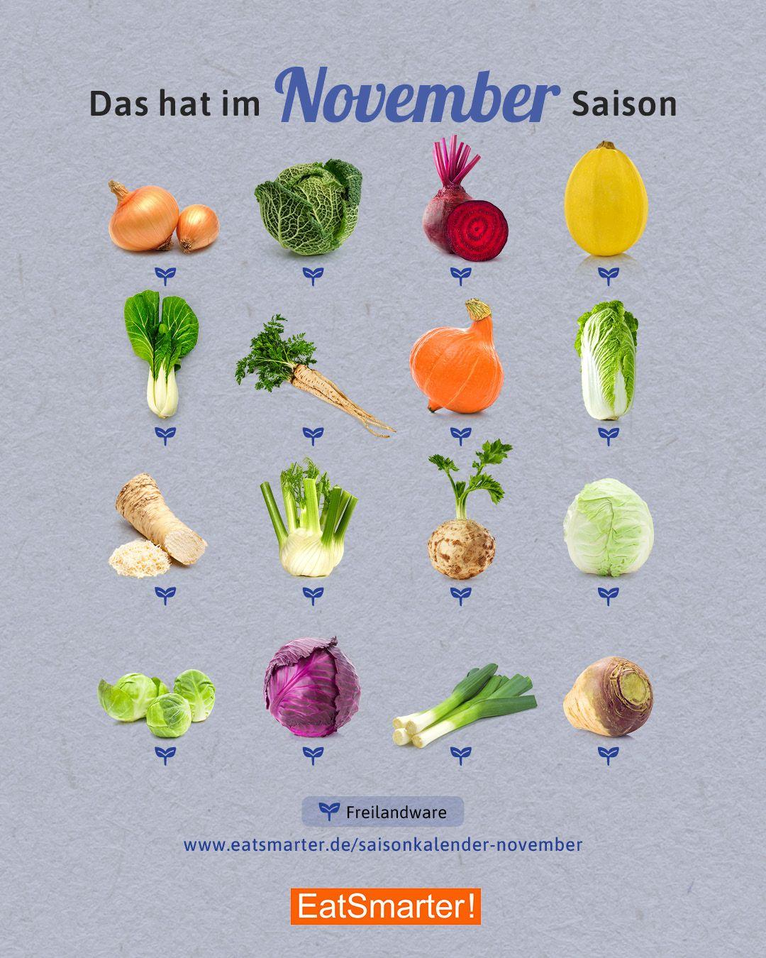 Gemüse Saisonkalender November