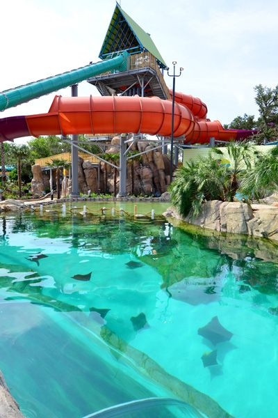 Aquatica Waterpark Now Open At Seaworld San Antonio Seaworld San Antonio Family Vacations In Texas Sea World