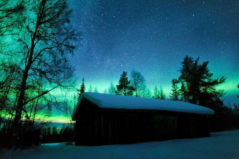 Photo in Powder Pro Snowmobile Safari - Five Stars of Scandinavia, Inc.