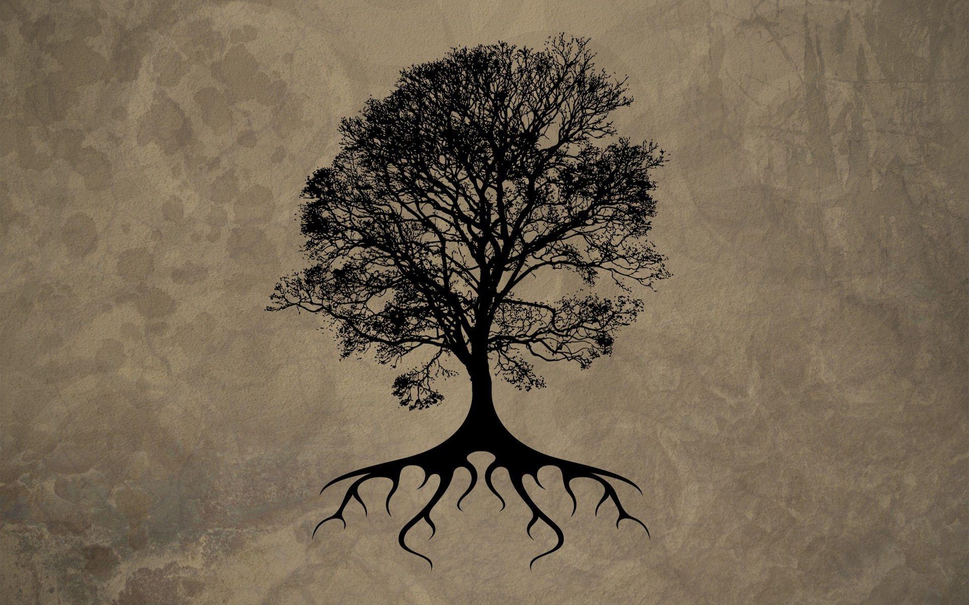 11 Best Hd Tree Of Life Wallpapers Oak Tree Tattoo Tree Tattoo Oak Tree Drawings