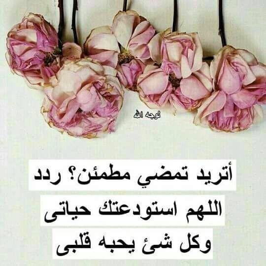 اللهم إني أستودعك حياتي Allah Love True Words Vegetables