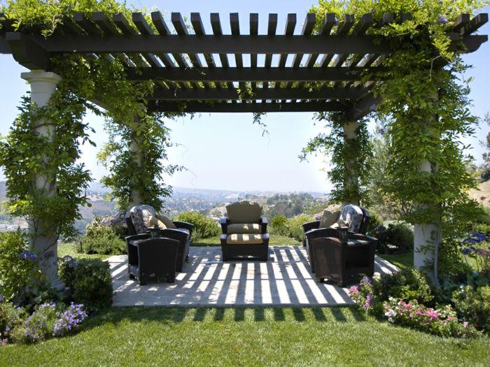Les plantes grimpantes, beaucoup d\'idées pour le jardin.