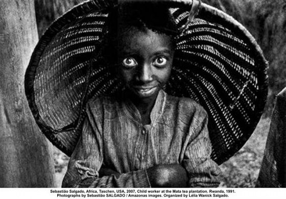 Criança trabalhadora da plantação de chá Mata. Ruanda, 1991 – Sebastião Salgado.