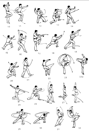martial arts diagram 2003 toyota corolla engine image result for kung fu diagrams pinterest