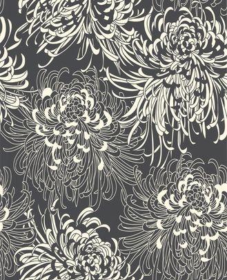 Gorgeous Chrysanthemum Wallpaper!