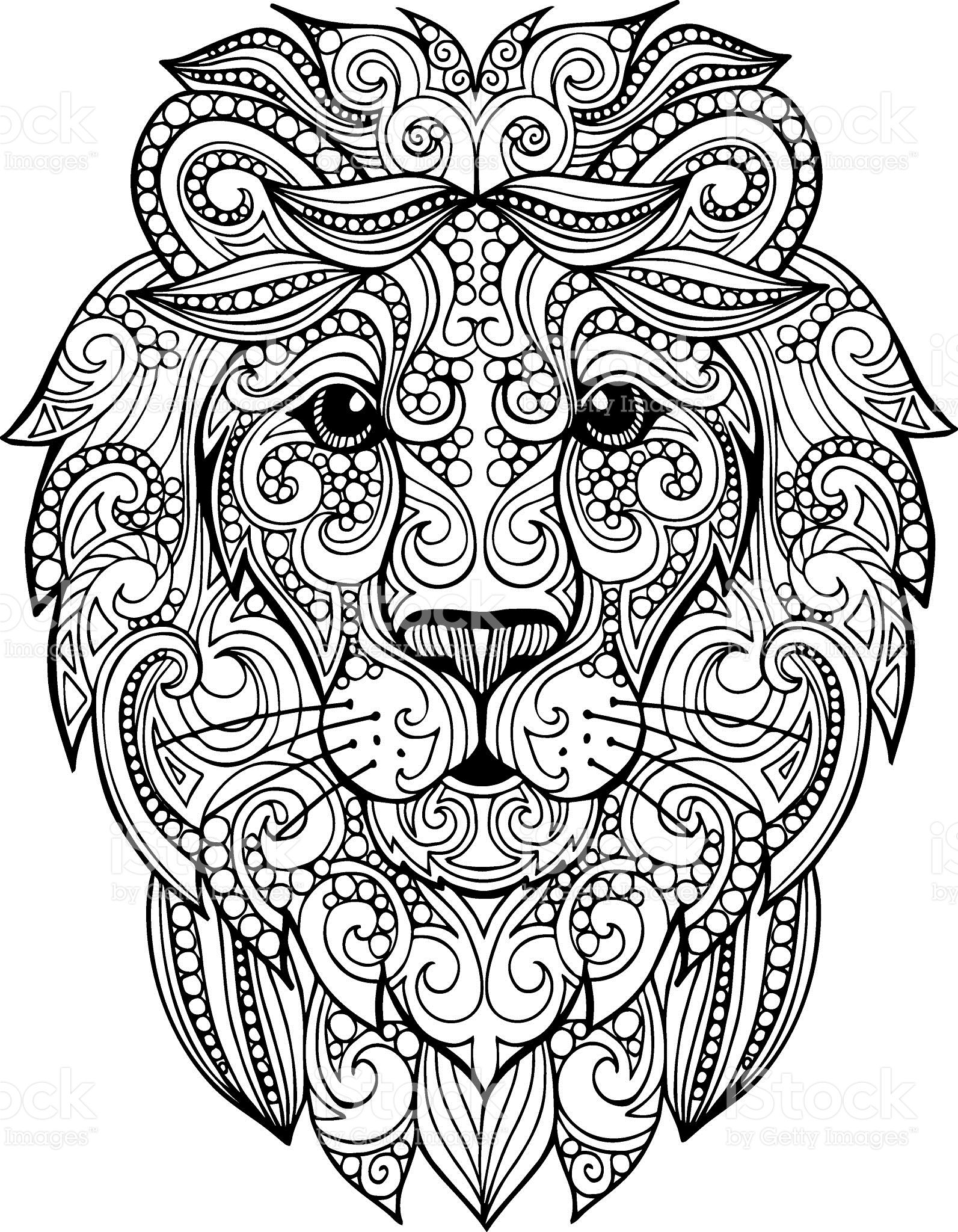 Hand drawn doodle ornate lion illustration royalty-free stock vector ...