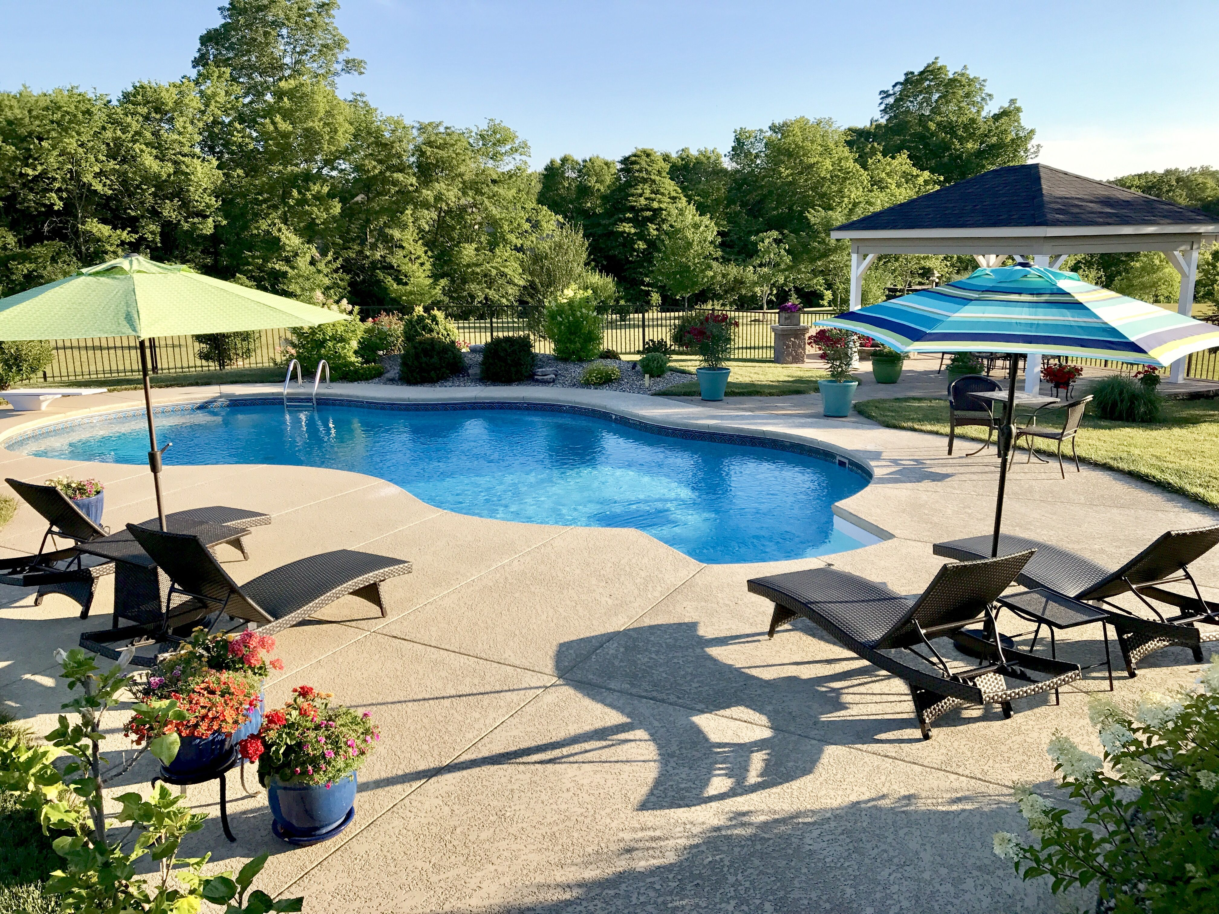 Backyard oasis, backyard pool, swimming pool, irregular shaped pools ...