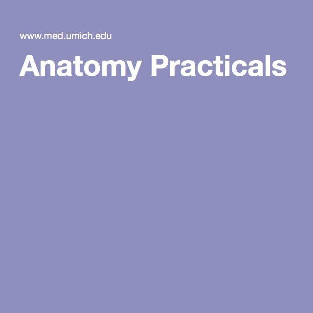 Anatomy Practicals Pa Pinterest Biological Resources