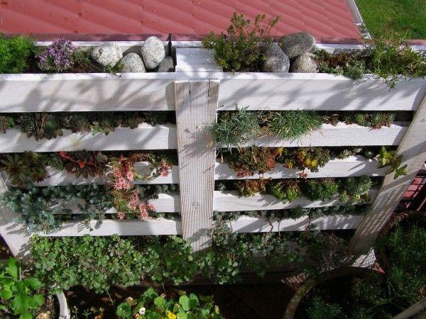 Pallet vertical garden | 1001 Pallets