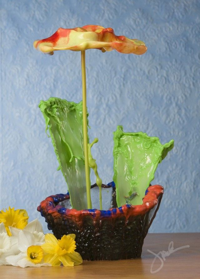 High Speed Liquid Flowers Photographed by Jack Long water photography flowers