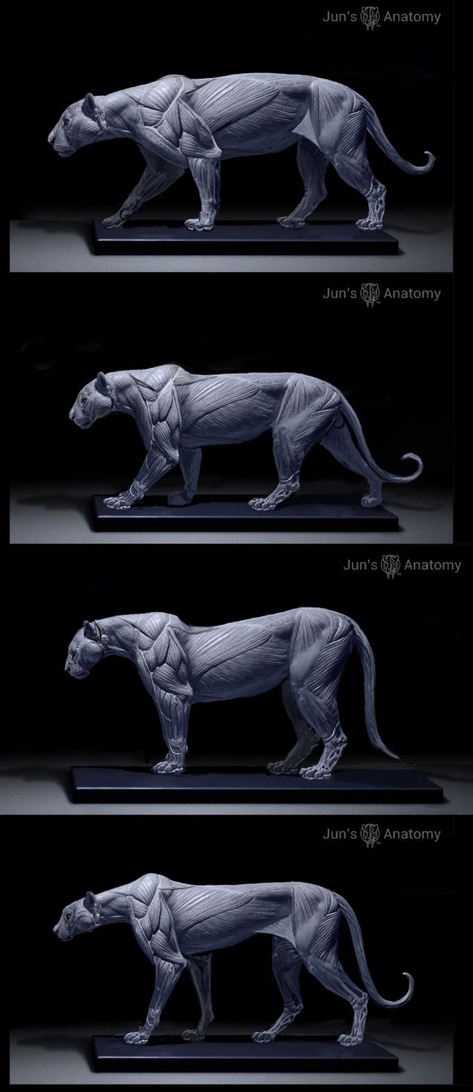 jaguar, leopard, cougar, cheetah   animal   Pinterest   Katzen ...
