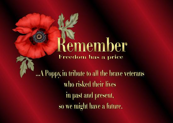 Remember veterans poppy by spicetree summer4th of julypicnics remember veterans poppy by spicetree mightylinksfo