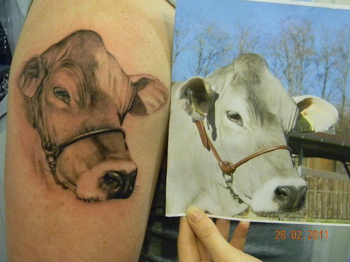 Tattoo By 2nd Skin Cow Tattoo Arm Tattoo Tag Art