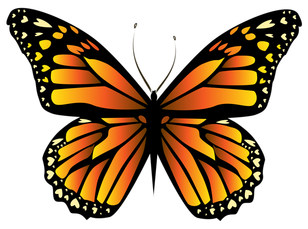 Orange Butterfly Png Clipar Yellow Butterfly Tattoo Butterfly Clip Art Butterfly Art