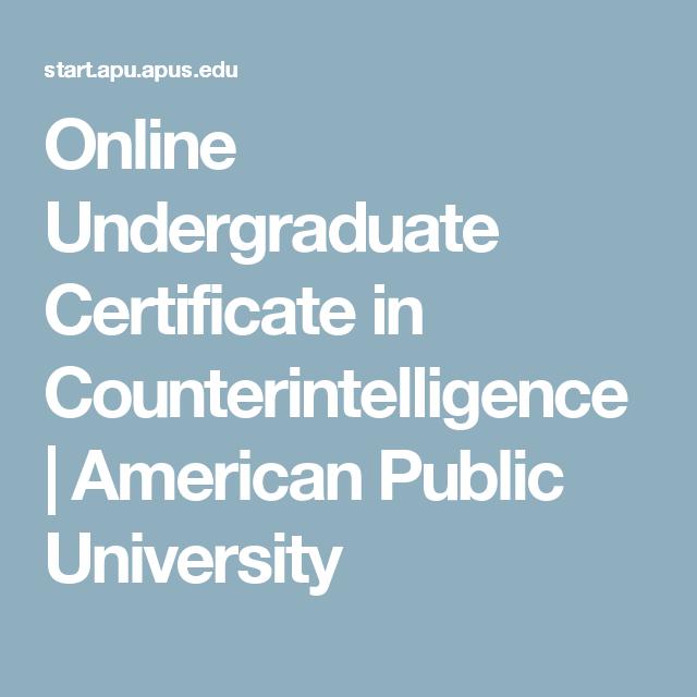 Online Undergraduate Certificate in Counterintelligence | American ...